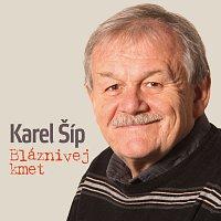 Různí interpreti – Karel Šíp - Bláznivej kmet
