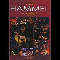 Pavol Hammel – V Aréne