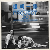 Tat Ming Pair – Da Ming Yi Pai Project 30