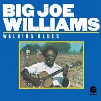 Přední strana obalu CD Walking Blues