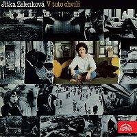 Jitka Zelenková – V tuto chvíli