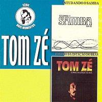 Tom Zé – Dois Momentos - Vol.2