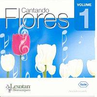 Různí interpreti – Cd Rocha - Vol 1