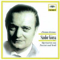 "Sándor Kónya, Orchestra del Maggio Musicale Fiorentino, Wiener Staatsopernchor – ""Nessun dorma"" - Opernarien von Puccini und Verdi"