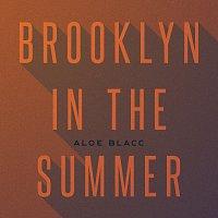 Aloe Blacc – Brooklyn In The Summer