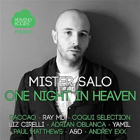 A&D – One Night in Heaven, Vol. 5 - Mixed & Compiled by Mister Salo