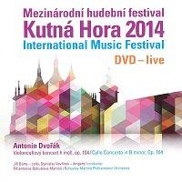 Mezinárodní hudební festival Kutná Hora 2014