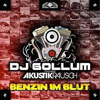DJ Gollum, Akustikrausch – Benzin im Blut