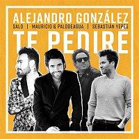 Alejandro González, Mauricio, Palodeagua, Salo, Sebastian Yepes – Te Pediré