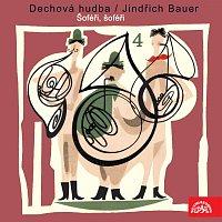 Dechová hudba, Jindřich Bauer – Dechová hudba/Jindřich Bauer (4) Šoféři, šoféři