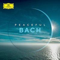 Různí interpreti – Peaceful Bach