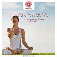 Davy Jones – entspanntSEIN - Pranayama (Yoga-Entspannung mit Hilfe des Atems)