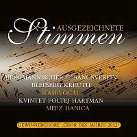 BGV Bleiberg Kreuth, [fam]vocal, Kvintet Foltej Hartmann, MePZ Danica – Ausgezeichnete Stimmen 2012