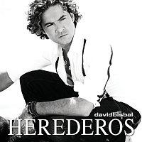 Přední strana obalu CD Herederos