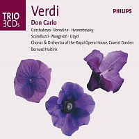 Galina Gorchakova, Dmitri Hvorostovsky, Richard Margison, Olga Borodina – Verdi: Don Carlo [3 CDs]