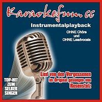 Karaokefun.cc VA – Lied von den Vergessenen - Instrumental - Karaoke
