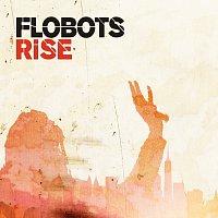 Přední strana obalu CD Rise [Wiley Edit]