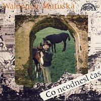 Waldemar Matuška – Co neodnesl čas