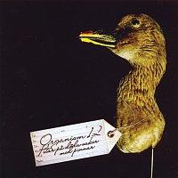 Organism 12 – Petar pa doda saker med pinnar
