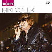 Miki Volek – Pop galerie