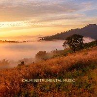 Chris Snelling, Chris Mercer, Robyn Goodall, James Shanon, Nils Hahn, Robin Mahler – Calm Instrumental Music