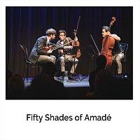 Florian Willeitner, Ivan Turkalj, Benedict Mitterbauer – Fifty Shades of Amadé: I. Der Wolf ging, doch Wolf gang
