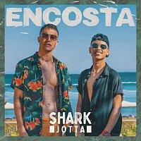 Shark, Jotta – Encosta