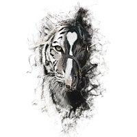 Alejandro Fernández, Los Tigres Del Norte – Para Sacarte De Mi Vida
