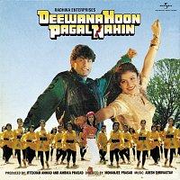 Různí interpreti – Deewana Hoon Pagal Nahin