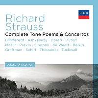 Různí interpreti – Richard Strauss - Complete Tone Poems & Concertos [13 Components]