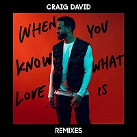 Craig David – When You Know What Love Is (Remixes)