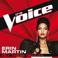 Přední strana obalu CD Hey There Delilah [The Voice Performance]