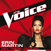 Erin Martin – Hey There Delilah [The Voice Performance]
