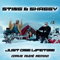 Sting, Shaggy, Dave Audé – Just One Lifetime [Dave Audé Remix]