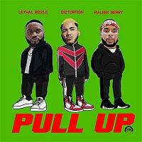 Diztortion – Pull Up