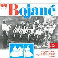 Bojané z Dolních Bojanovic – Dechová hudba Bojané