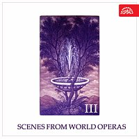Různí interpreti – Scény ze světových oper III.