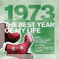 Various Artists.. – The Best Year Of My Life: 1973