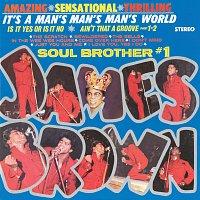 Přední strana obalu CD It's A Man's Man's Man's World