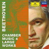 Různí interpreti – Beethoven 2020 – Chamber Music 4: Large Works