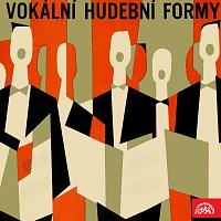 Různí interpreti – Vokální hudební formy