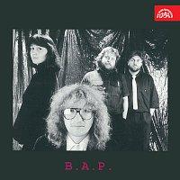 B. A. P. – B. A. P.