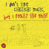 Rudolf Baumgartner, Johann Sebastian Bach – I don't like classical music, but I really like this!