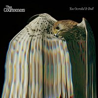 The Courteeners – You Overdid It Doll