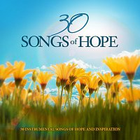 Různí interpreti – 30 Songs Of Hope: 30 Instrumental Songs Of Hope And Inspiration