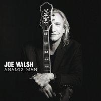 Joe Walsh – Analog Man