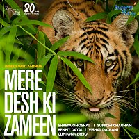 Shreya Ghoshal, Sunidhi Chauhan, Benny Dayal, Vishal Dadlani, Clinton Cerejo – Mere Desh Ki Zameen