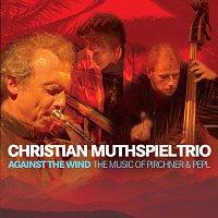 Christian Muthspiel, Franck Tortiller, Georg Breinschmid – Against The Wind