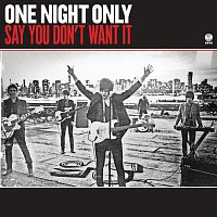 One Night Only – Say You Don't Want It