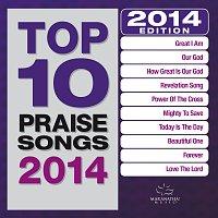Různí interpreti – Top 10 Praise Songs 2014